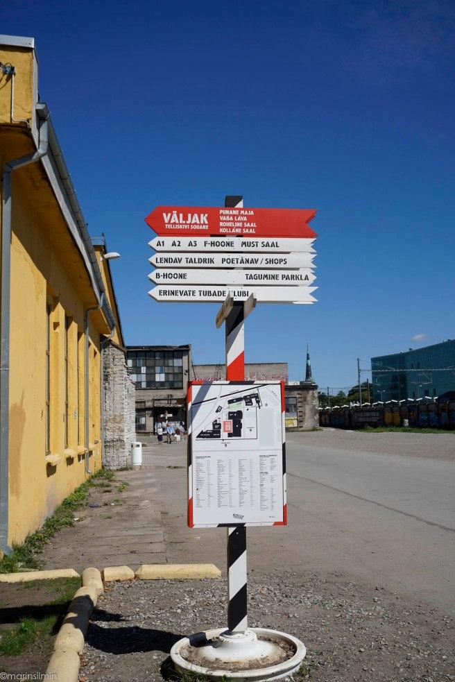 Marin_silmin-0831